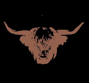 Highland 2000 Icon